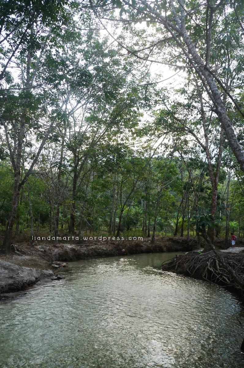 piknik hore di sungai hijau kampar